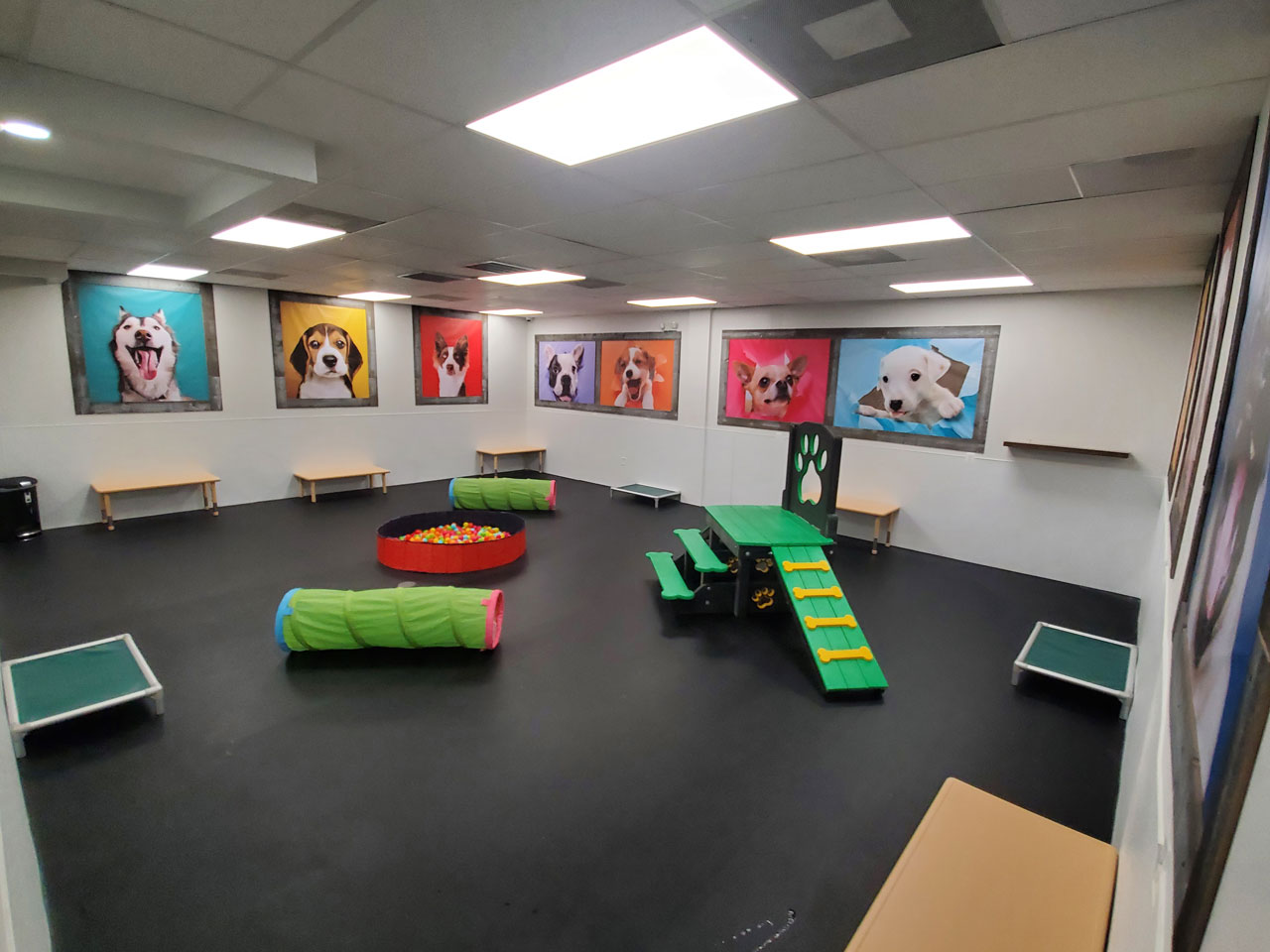 Indoor area of The Pup Camp dog daycare